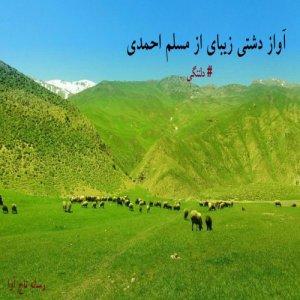 آهنگ دلتنگی از مسلم احمدی
