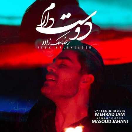 رضا ملک زاده دوست دارم هنوز دلم میخوادت تو بمون پیشم